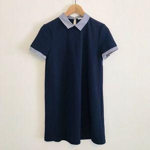 ZARA // Striped Poplin Collar Navy Shift Dress